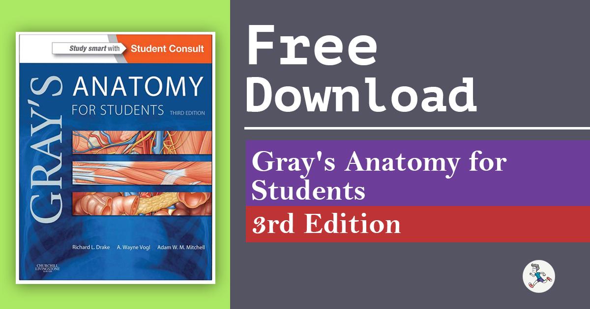 Fine Grays Anatomy For Student Elaboration Human Anatomy Images